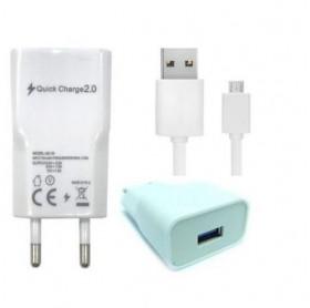 CARREGADOR DE TOMADA 2 USB 5V/2.4A C/CABO MICRO USB IVON GVBRASIL FTD.4501